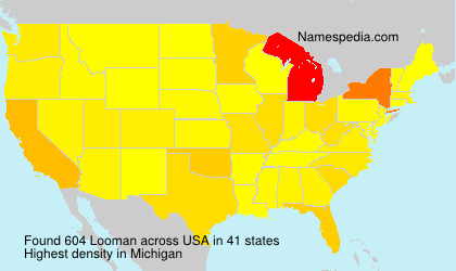 Surname Looman in USA