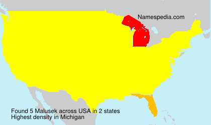 Surname Malusek in USA