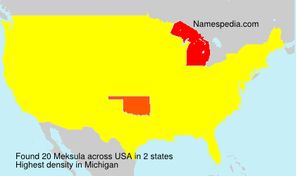 Surname Meksula in USA