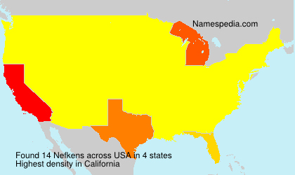 Surname Nefkens in USA