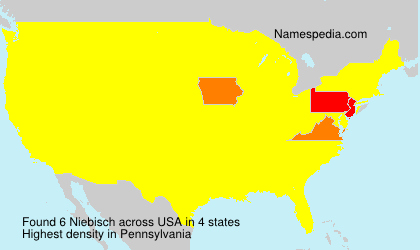 Surname Niebisch in USA
