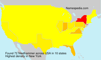 Surname Niedhammer in USA