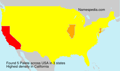 Surname Palete in USA