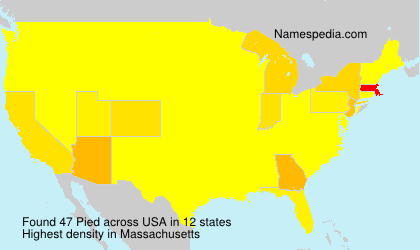 Surname Pied in USA