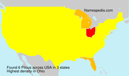Surname Pilous in USA