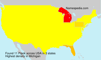 Surname Pipok in USA