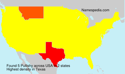 Surname Pullishy in USA