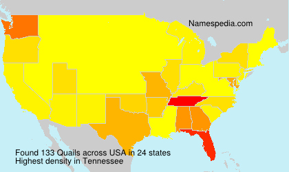 Surname Quails in USA