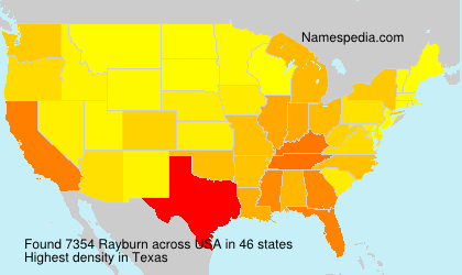 Surname Rayburn in USA
