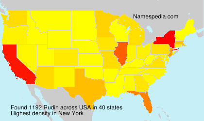 Surname Rudin in USA