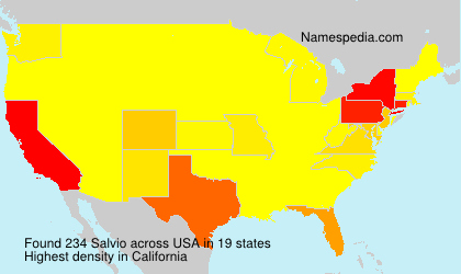 Surname Salvio in USA