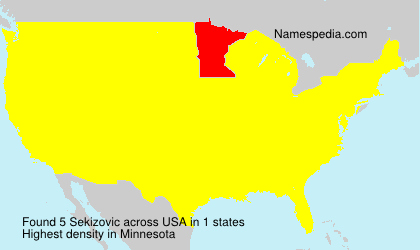 Surname Sekizovic in USA