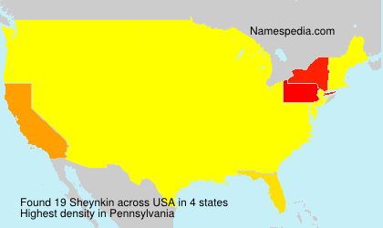 Surname Sheynkin in USA