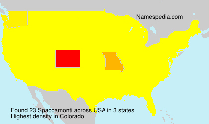 Surname Spaccamonti in USA