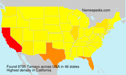 Surname Tamayo in USA