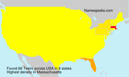 Surname Tesini in USA