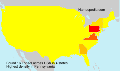 Surname Tonsel in USA