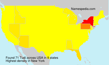 Surname Tudi in USA