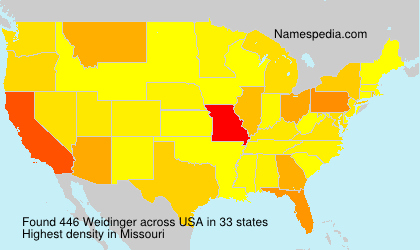 Surname Weidinger in USA