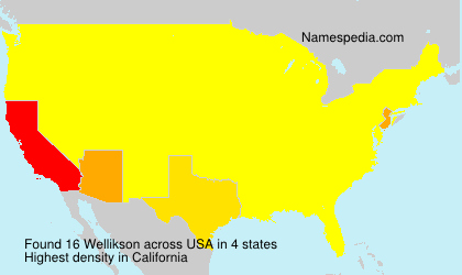 Surname Wellikson in USA